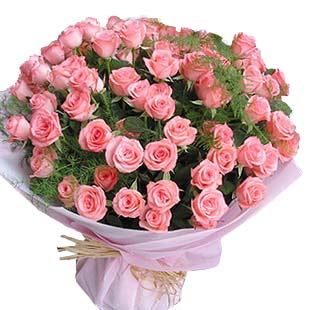 108枝粉玫瑰,龟背叶围边