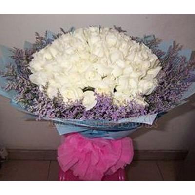 99枝白玫瑰,情人草外围,
