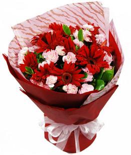 18枝粉色康乃馨,10枝红色扶郎花