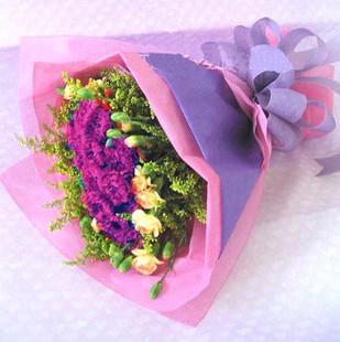 24只紫康乃馨,外围12只浅色康乃馨 黄莺。