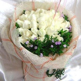 33枝精品白玫瑰,石竹梅围边;