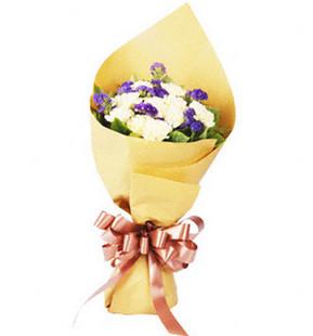 黄色康乃馨12朵、紫色勿忘我、绿色叶材