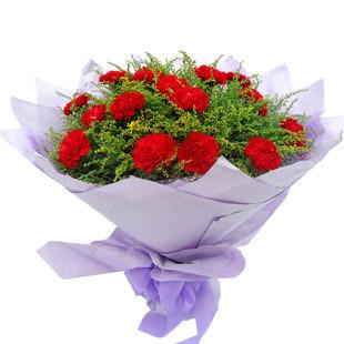 16枝红色康乃馨,黄莺丰满