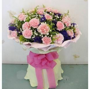 20枝粉色康乃馨+紫色勿忘我+满天星+黄莺