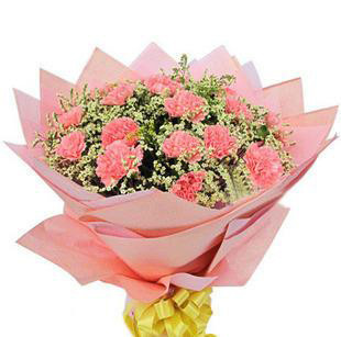 26枝粉色康乃馨,丰富水晶草点缀
