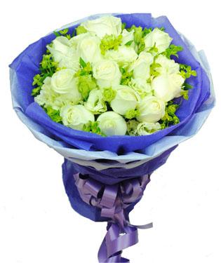 19枝白玫瑰,叶上黄金搭配或者黄莺,勿忘我代替