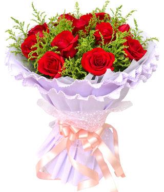 11枝顶级红玫瑰,加拿大黄莺丰满