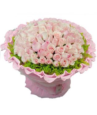 99枝粉玫瑰,黄莺外围