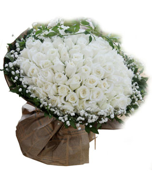 99枝白玫瑰,外围满天星绿叶外围