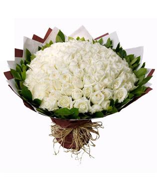 99枝白玫瑰,绿叶围绕(如果拉菲草没有用蝴蝶结代替)