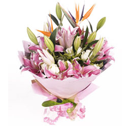 5枝粉色多头香水百合,白玫瑰、天堂鸟、黄莺点缀