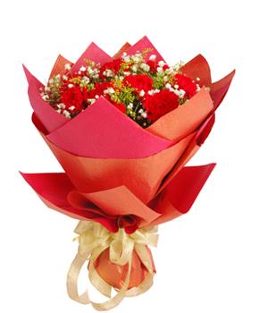 精致红色康乃馨11枝,满天星点缀,黄莺丰满。