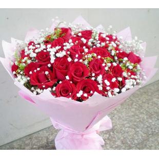 33朵红玫瑰,搭配满天星