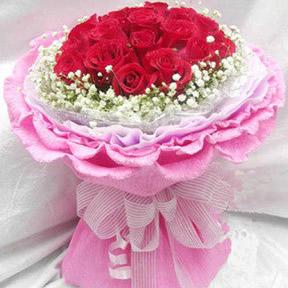 19枝红玫瑰,外围满天星