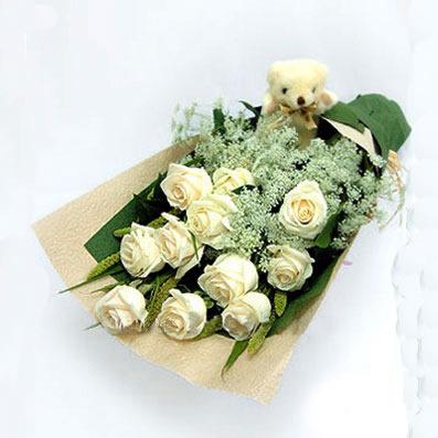 11枝白色玫瑰,白色小花点缀