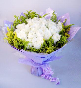 22枝白玫瑰外围丰满黄莺。