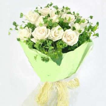 21枝精品白色玫瑰,叶上黄金(或黄莺)丰满