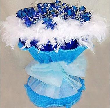 21支蓝玫瑰,情人草点缀.白色羽毛外