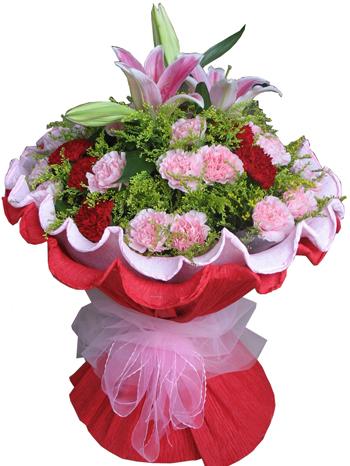 2枝粉色百合,红色,粉色共30枝康乃馨,配叶