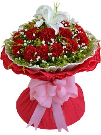 16支红色康乃馨,1支白色香水百合