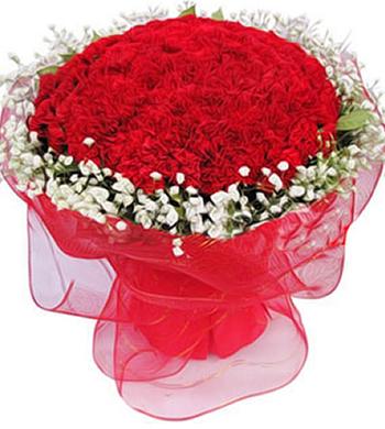 99枝红色康乃馨,满天星围边