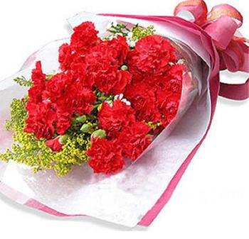 9支红色康乃馨,配黄莺