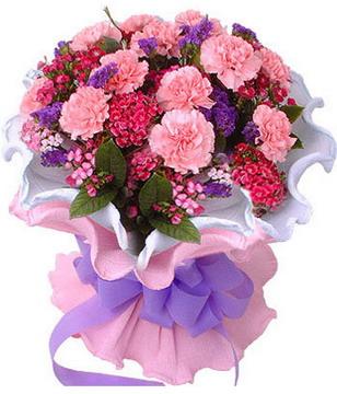 粉色康乃馨16枝,红康乃馨5枝,石竹梅、勿忘我。