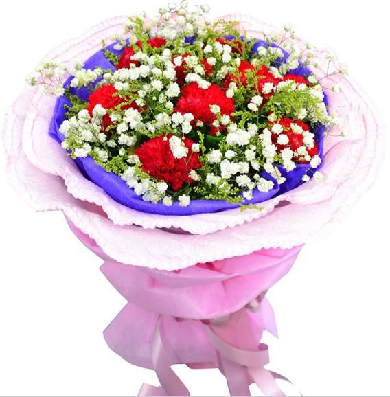 9枝红色康乃馨,满天星、黄莺丰满