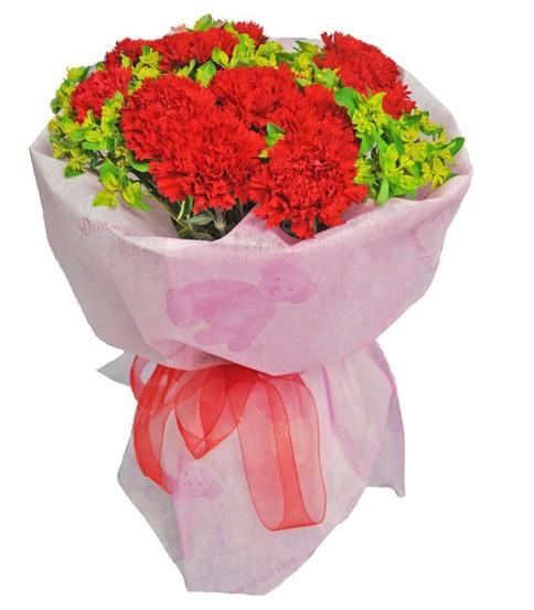9枝红色康乃馨,配叶丰满