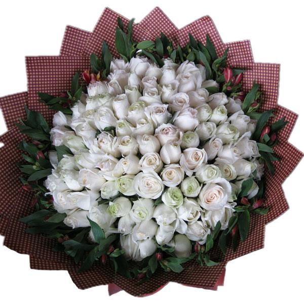 66枝白玫瑰,绿叶围绕
