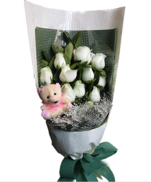 11朵白玫瑰+1只小熊。