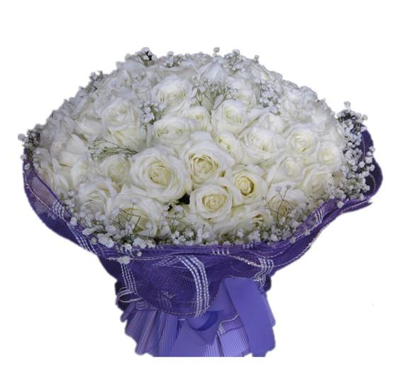 99枝白玫瑰配满天星