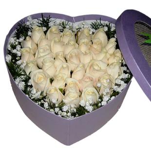 33朵乳白色玫瑰,绿叶/满天星外围