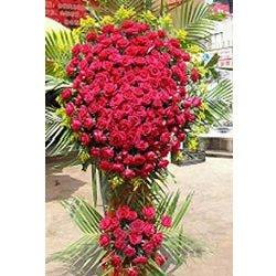 200朵精品红玫瑰,配散尾叶,适量黄英