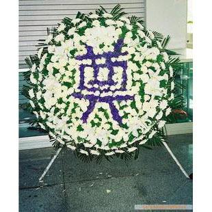 100只白色菊花插成圆形,紫色勿忘我插成奠字