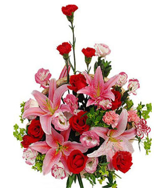 红色/粉色/紫边康乃馨共10朵,红玫瑰7枝,粉多头香水百合2枝,粉桔梗+叶上黄金+绿叶