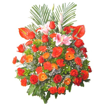 多头粉香水百合+支红掌+支红玫瑰+支红康乃馨+支橙色非洲菊+配花