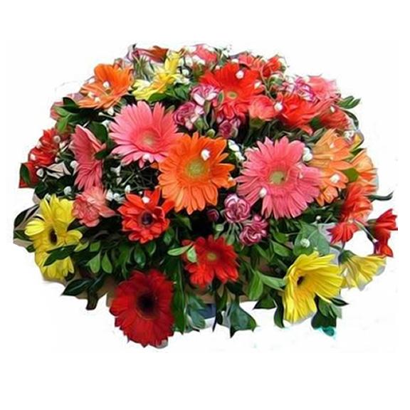 各色太阳花,多头康乃馨,满天星,绿叶间插