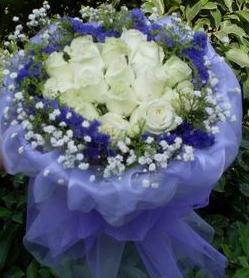 12枝白玫瑰,外围勿忘我,满天星