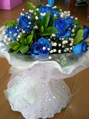 11支精品蓝色妖姬,满天星、绿叶点缀其中