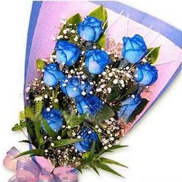 11枝蓝玫瑰,满天星,绿叶适量;