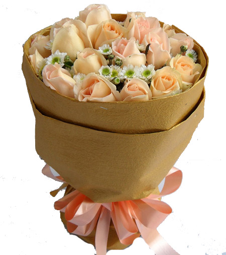 香摈玫瑰19支,小菊精美花束