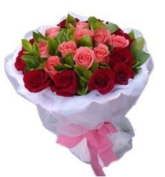 11枝红玫瑰,10枝粉玫瑰,绿叶间插