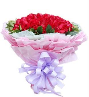 红玫瑰、33朵玫瑰