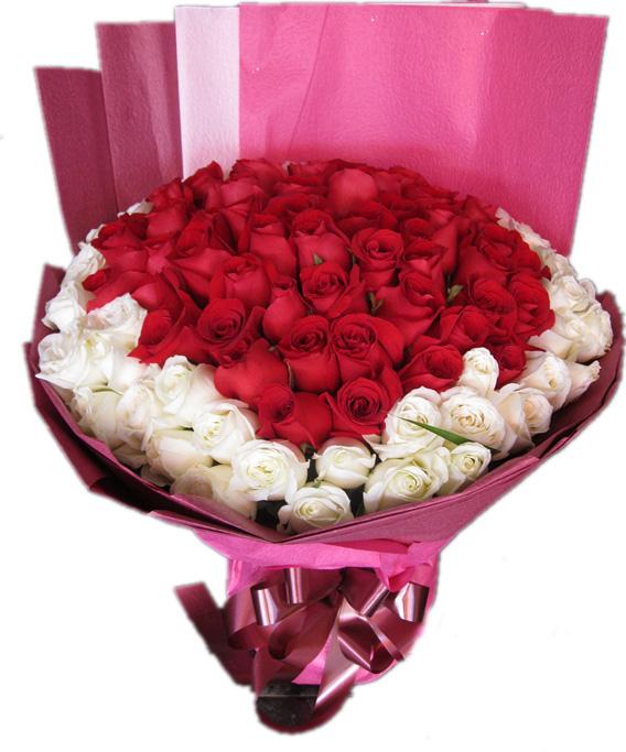 66枝红玫瑰,33枝白玫瑰。