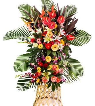 鹤望兰,剑兰,洋兰,百合,非洲菊,玫瑰,红朱蕉,散叶,八角叶适量。