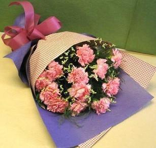 12朵粉色康乃馨,配水晶花