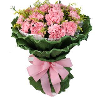19朵粉色康乃馨,配黄莺