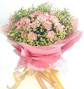 19枝粉色康乃馨,配水晶花