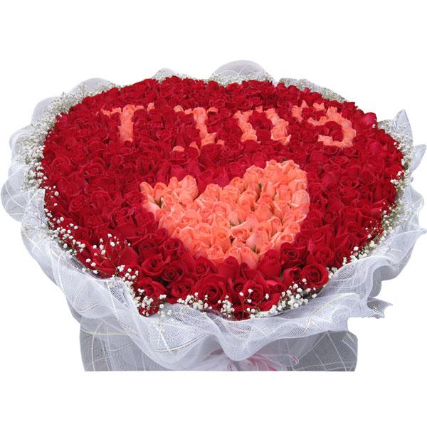 66朵粉玫瑰+933朵红玫瑰,满天星外围